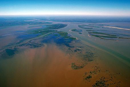 Atchafalaya River Delta image