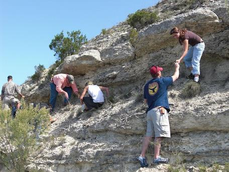 TAMUUCC geology students searching for Cretaceous-aged fossils in the Texas Hill Country