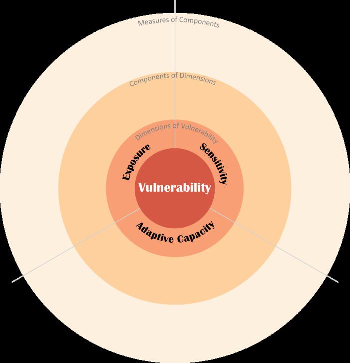 Assessing Vulnerability  The Vulnerability Scoping    Diagram