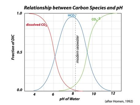 C chemical speciation