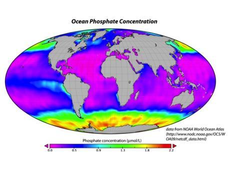 oceanic phosphate