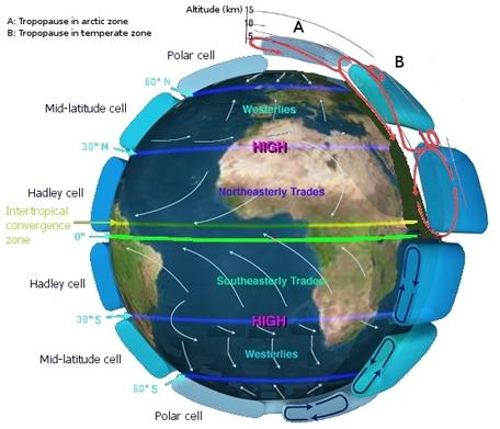 Circulation of winds around Earth