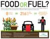 Corn for fuel or food?