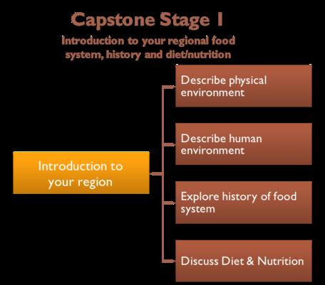 Capstone Stage 1