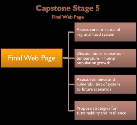 Capstone Stage 5
