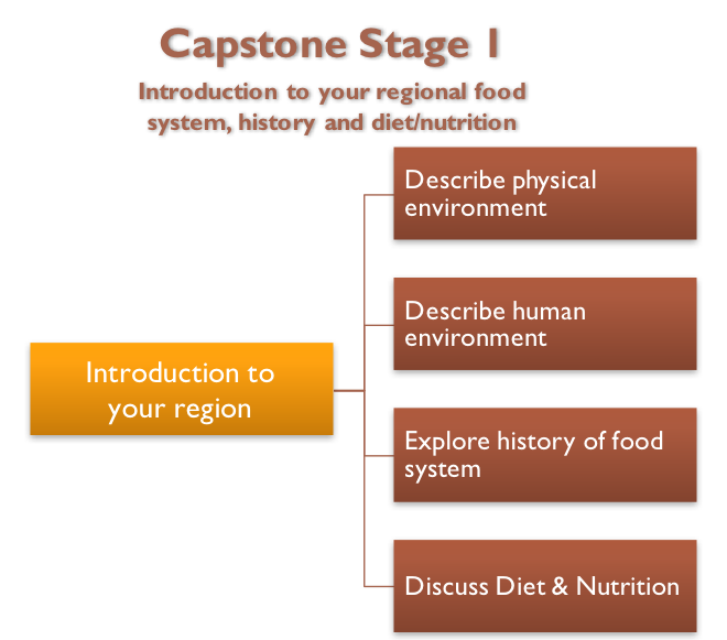 Capstone Stage 1 Diagram
