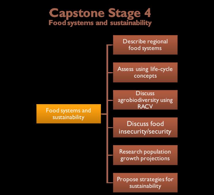 Capstone Stage 4a diagram