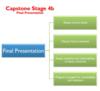 Capstone stage 4b diagram