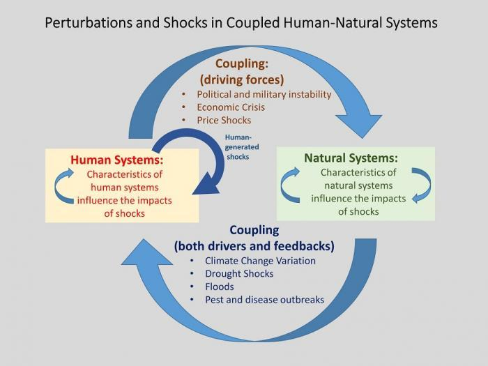 CHNS - basic depiction of perturbations and shocks