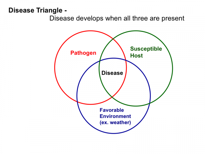 Disease develops when all three are present: pathogen, susceptible host, and favorable enviroment.
