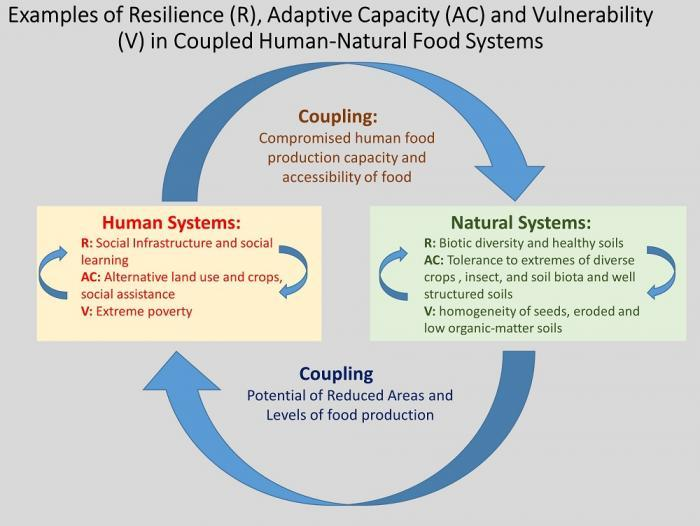 Examples of Resilience (R), Adaptive Capacity (AC), and Vulnerability (V)