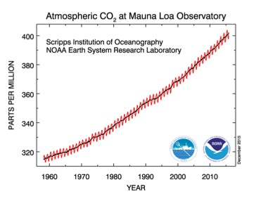 Graph of Atmospheric CO2 at Mauna Loa Observatory. Refer to caption for more details.