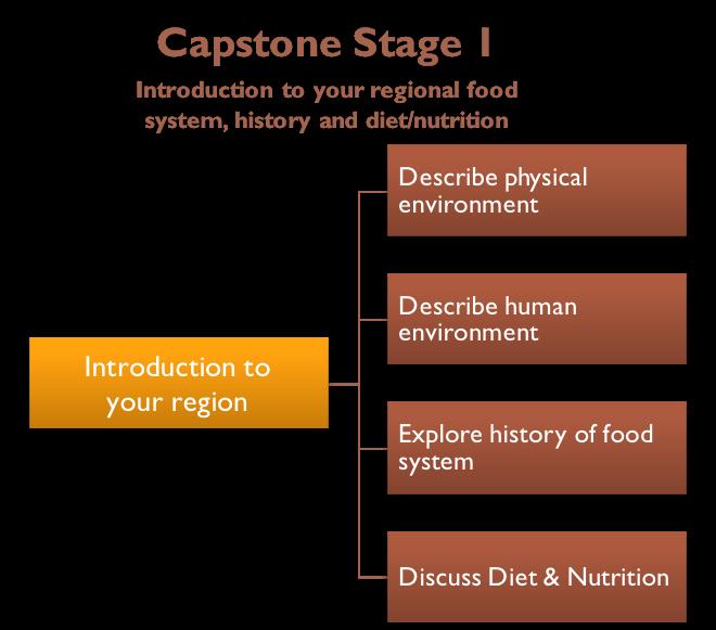 Schematic of Capstone stage one