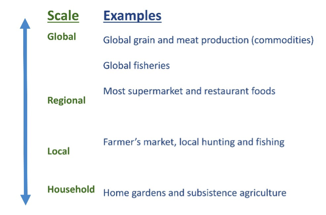 Spacial scale of organization in food systems