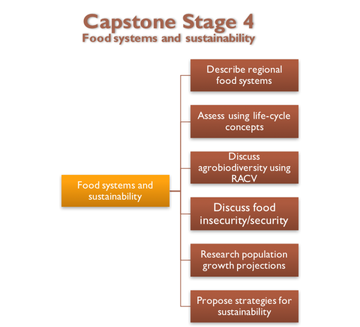 Stage 4 Diagram