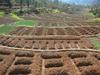 terrace irrigation