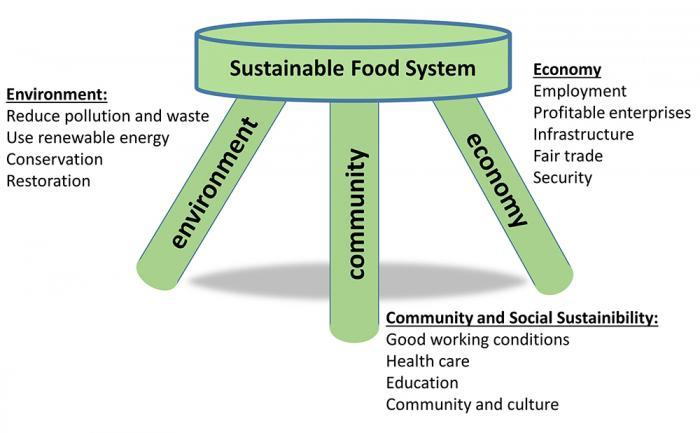 "Challenges to Producers: Sustainability and ""Poverty Traps"""