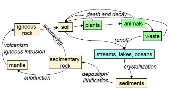 natural phosphorus cycle