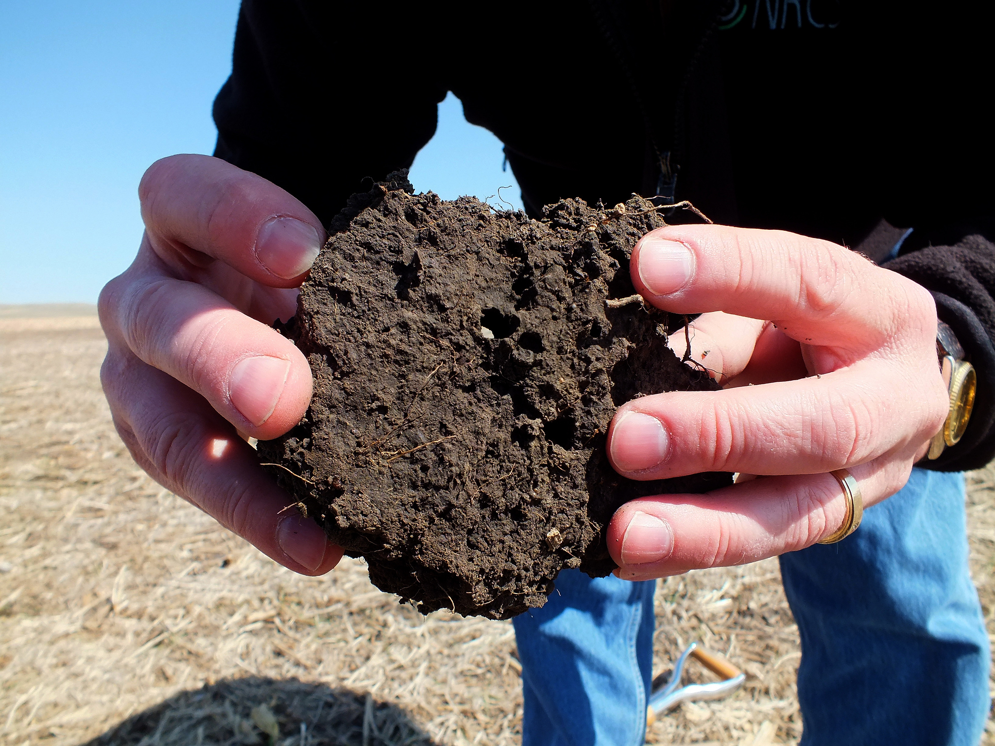 properties of soil including density and porosity environmental sciences essay Read 22 answers by scientists with 33 recommendations from their colleagues to  the  literature tells us that soils with high carbon should have low soil density.