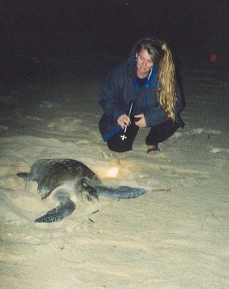 Sea Turtle Field Work