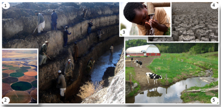 Water, Agriculture and Sustainability Collage