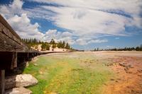 Norris Basin, YNP