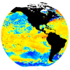 SST anomaly map
