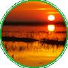 Sunrise over a coastal marsh