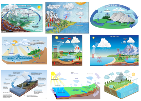 Water Cycle Visualizations
