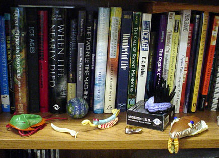 Bookshelf with some print resources and toy trilobites