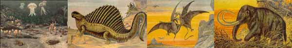 A faunal rogues gallery of the Phanerozoic Eon
