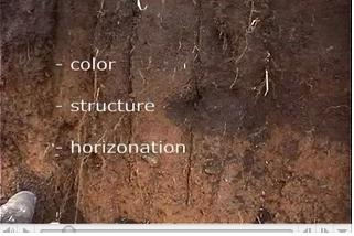 soil_char