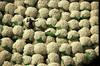 Picture of bales of African cotton