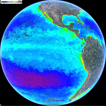 Chlorophyll concentration in Pacific from Google Earth