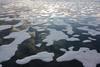 Sea Ice Patterns