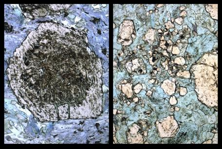 Thin Sections