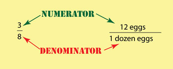 illustration of numerator and denominator