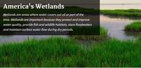 EPA Wetlands Site
