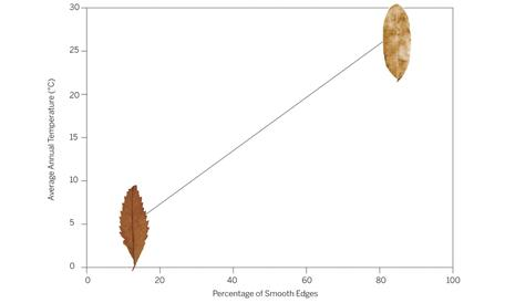 Fossils Evidence 2 Leaf Margin Analysis Data