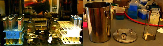 Experimental set-up for growing anaerobic organisms.