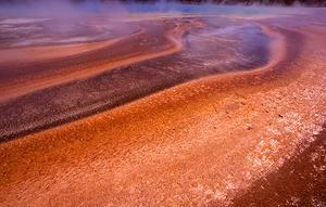 Thermophile mats of Grand Prismatic, the largest hot spring in Yellowstone National Park.
