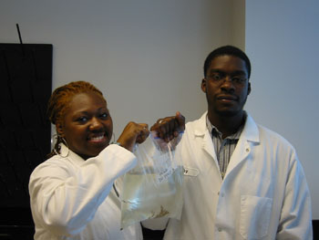 Shalynn Mills (left) and Ammar Hanif (right) with a sample of the sponge Microciona prolifera to be used for bacterial community analysis.