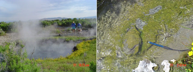 Images of Surprise Valley Hot Springs