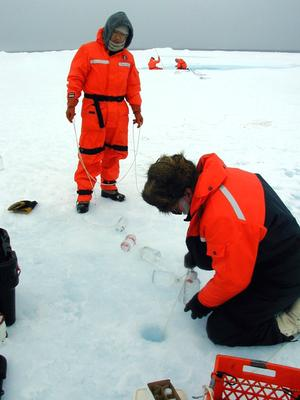 Scientists measure primary productivity under ice