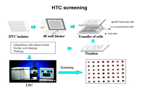 High Throughput Culturing