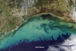 Satellite image of the Gulf of Mexico. Light colored water shows, often nutrient-rich sediment flowing into the deeper ocean water. These nutrients facilitate growth of phytoplankton blooms, which can lead to hypoxic conditions.