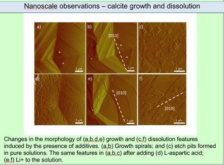AFM Imamges of Calcite Precipitation and Dissolution