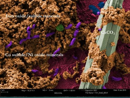 Micro corrosion products.jpeg