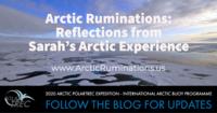 Arctic Ruminations.png