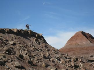 Students at Petrified Forest National Park